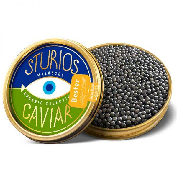 Caviar Orgánico Bester