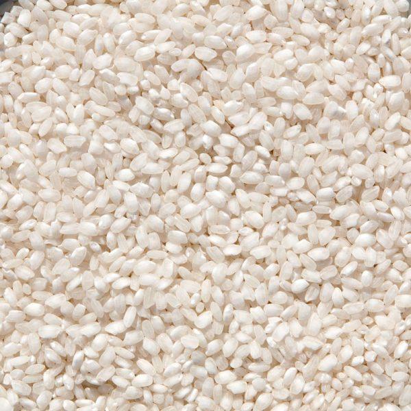 Arroz Albufera. Arroz de grano redondo y perlado