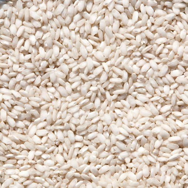 Arroz Arborio grano medio perlado y tamaño grande
