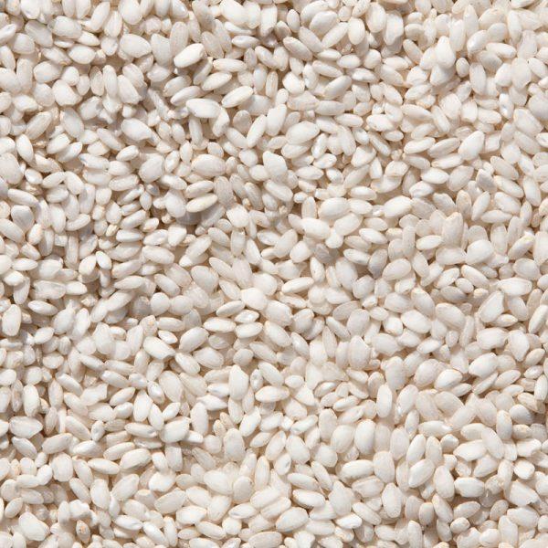 Arroz Vialone nano grano medio perlado y tamaño pequeño