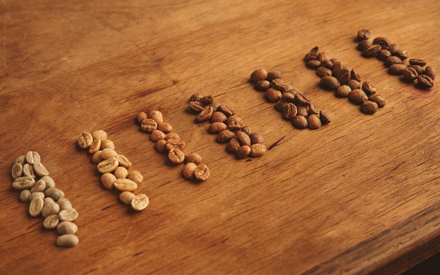 ¿Cuántos tipos de café existen y cuál es el mejor?