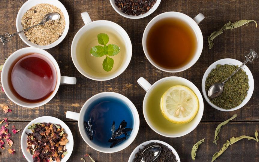 ¿Cuántos tipos de té existen y cuáles son sus propiedades?